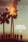 Animal Kingdom: The Complete First Season DVD Release Date