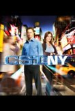 CSI: NY - The Eighth Season DVD Release Date