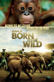 IMAX: Born to Be Wild [Blu-ray 3D / DVD / UltraViolet Digital Copy Combo Pack] DVD Release Date