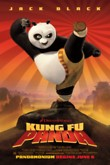 Kung Fu Panda DVD Release Date