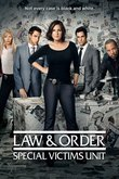 Law & Order: Special Victims Unit - The Fourteenth Year DVD Release Date