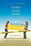 Sunshine Cleaning DVD Release Date