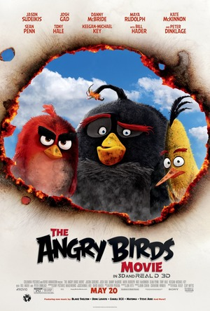 The Angry Birds Movie (2016) DVD Release Date