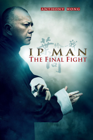 Ip Man: The Final Fight (2013) DVD Release Date