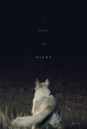 It Comes at Night (2017) DVD Release Date
