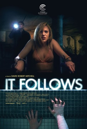 It Follows (2014) DVD Release Date