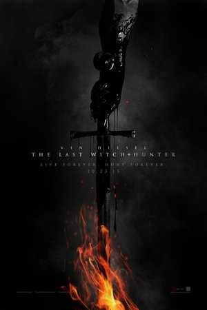The Last Witch Hunter (2015) DVD Release Date
