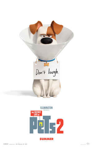 The Secret Life of Pets 2 (2019) DVD Release Date