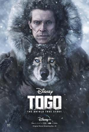 Togo (2019) DVD Release Date